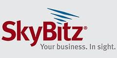 skybitz logo